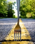 fork-in-the-road